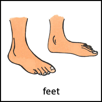 Feet Pecs Card